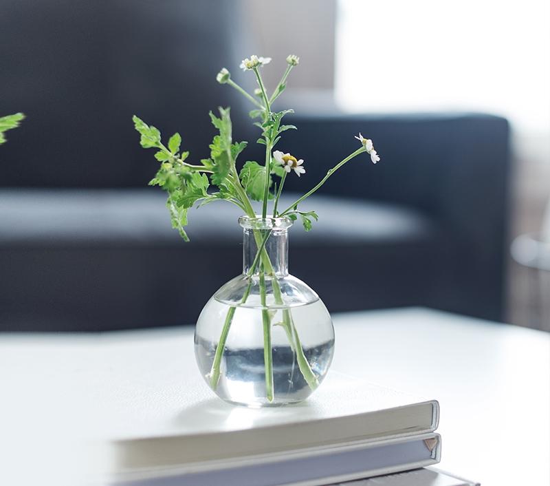 Rostliny potrebuji kvalitni vodu