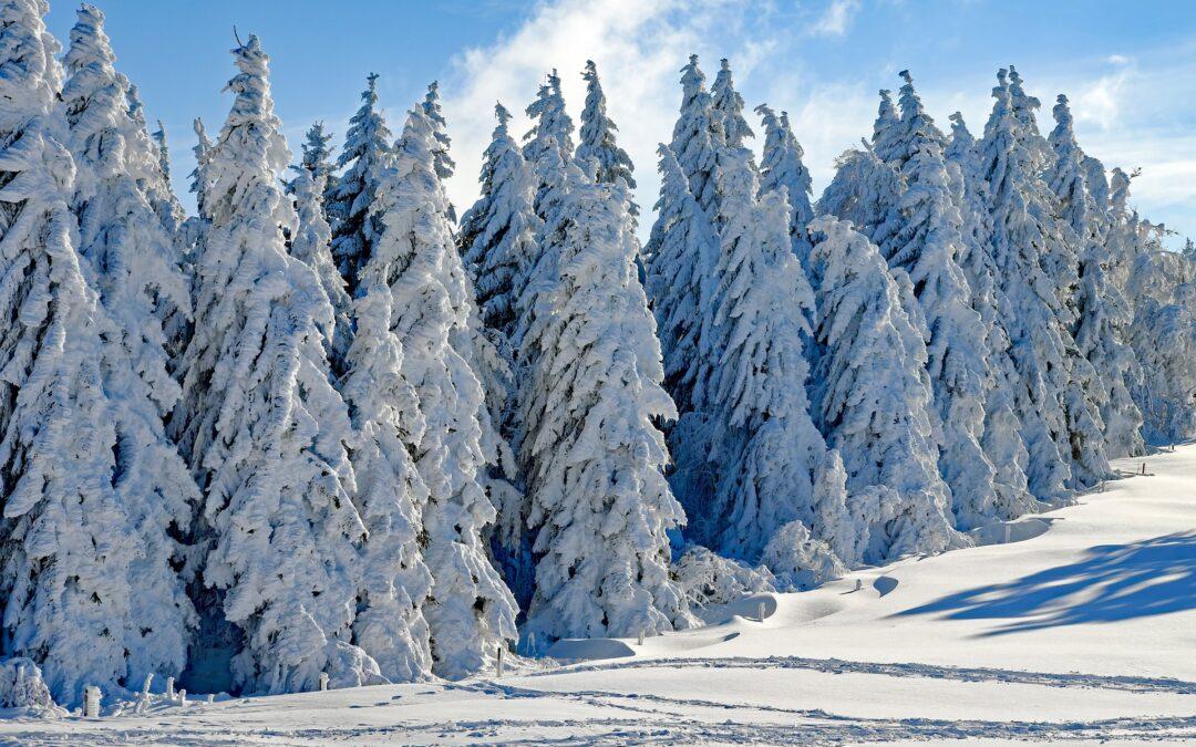 Je sníh ještě sníh?