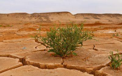 Klimatické vlivy na zemi