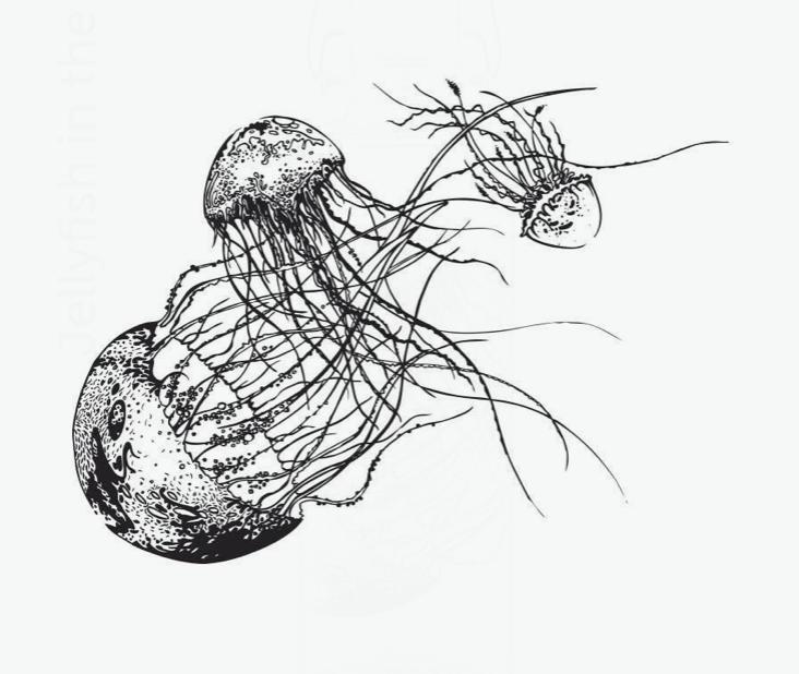 Medúza 2